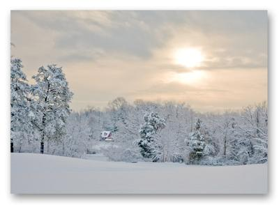 Beautiful Snow Covered Landscape