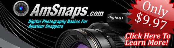 AmSnaps - Digital Photography Basics For Amateur Snappers