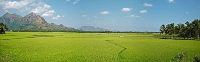 Beautiful Landscape Photograph Of Countryside Scenery