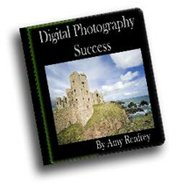Digital Photography Success By Amy Renfrey